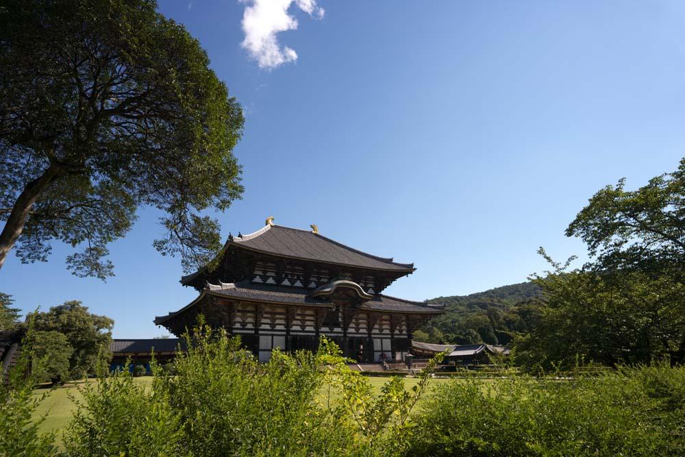 Todaiji, the great buddha hall.