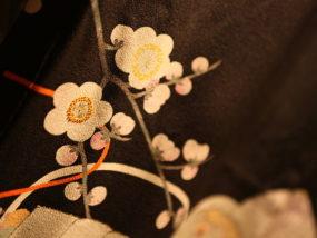 800px-Kimono_detail_2
